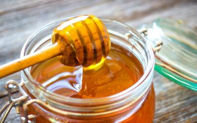 Sperimentazioni dopo l'incontro su il miele