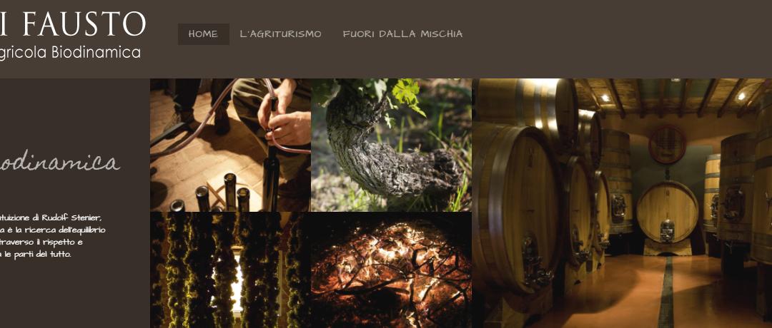 Visita guidata e degustazione all'Azienda Agricola Andi Fausto